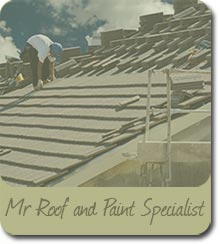 Mr Roof and Paint Specialist Image